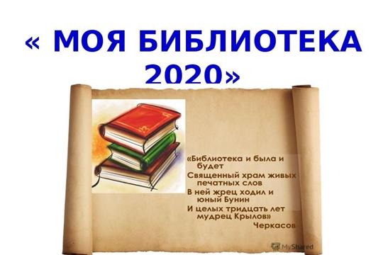 Итоги МБУК «Централизованная библиотечная система» Аликовского района за 2020 год