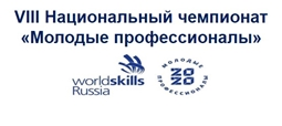 VIII Национальный чемпионат «Молодые профессионалы» (WorldSkills Russia)