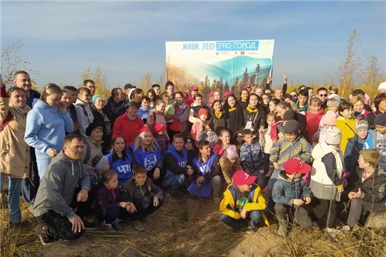 Движение волонтеров-экологов