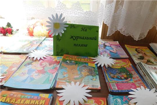 Библиографический час «На журнальной поляне» (Таушкасинская с/б)