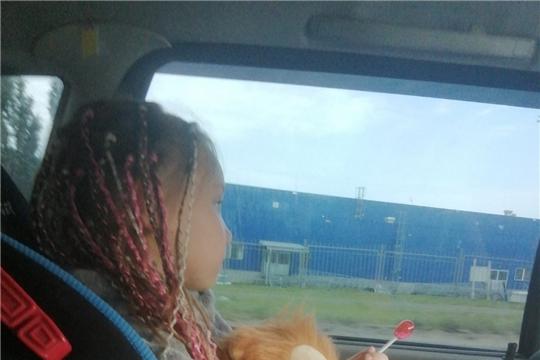 Дорожная безопасность