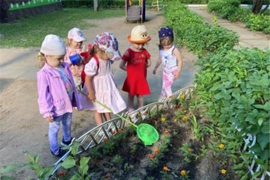 Детская безопасность летом. Опасные насекомые