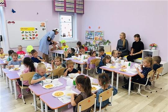 Родительский контроль организации питания в ДОУ