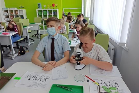 Майская учебно-образовательная программа по биологии