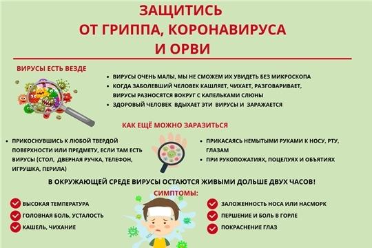 Рекомендации гражданам: профилактика гриппа, короновирусной инфекции и других возбудителей ОРВИ