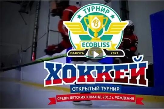 """""""Сокол-2012"""" примет участие в турнире по хоккею ECOBLISS CUP"""