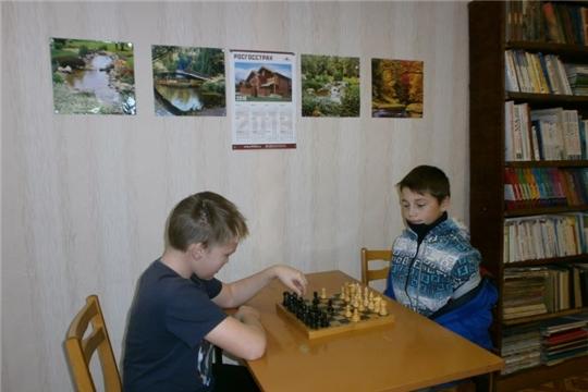 Сеанс игры в шахматы «Выбирай спорт!» прошел в Карабашской сельской библиотеке