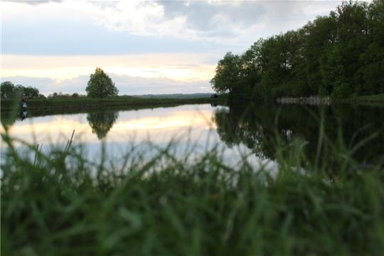 Малокамаевская сельская библиотека представляет цикл фотографий о прудах близ деревни Кочино
