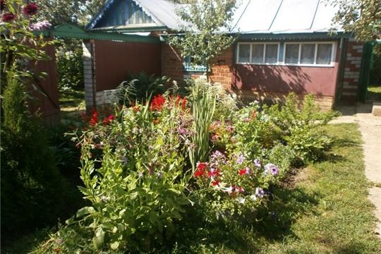Цветочный калейдоскоп «Фантазии на клумбе» организовала Карабашская сельская библиотека