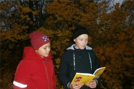 Лермонтовские чтения прошли в Карабашской сельской библиотеке