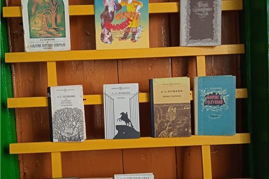 Пушкинский день России в Покровской сельской библиотеке