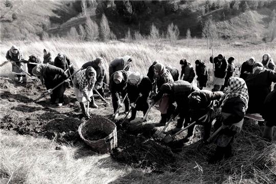 Работники культуры Мариинско-Посадского района – строителям безмолвных рубежей…