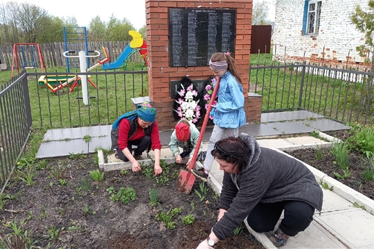 Посадка цветов в День Победы
