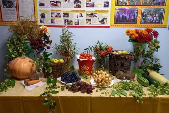 11 сентября, в рамках всероссийской акции «Культурная суббота», в Эльбарусовском центральном сельском Доме культуры была организована выставка «Дары осени».