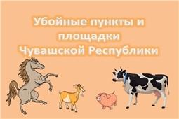 Убойные пункты и площади Чувашской Республики