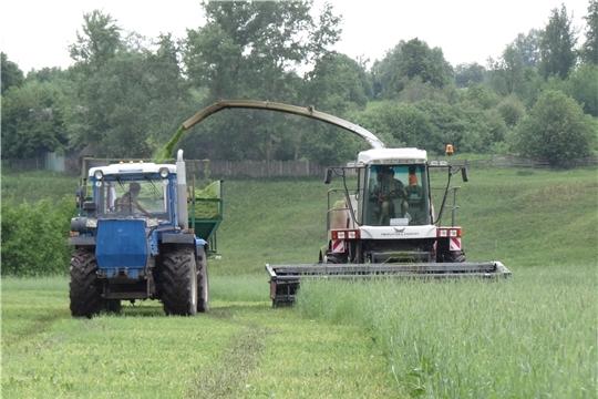 В Моргаушском районе заготовка кормов в полном разгаре