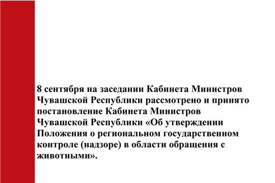 Принято постановление Кабинета Министров Чувашской Республики «Об утверждении Положения о региональном государственном контроле (надзоре) в области обращения с животными».