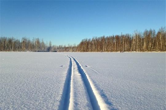 Лыжня России - 2021