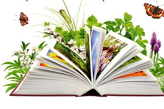 Подведены итоги дня экологической книги