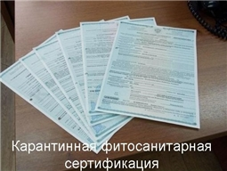 Карантинная фитосанитарная сертификация