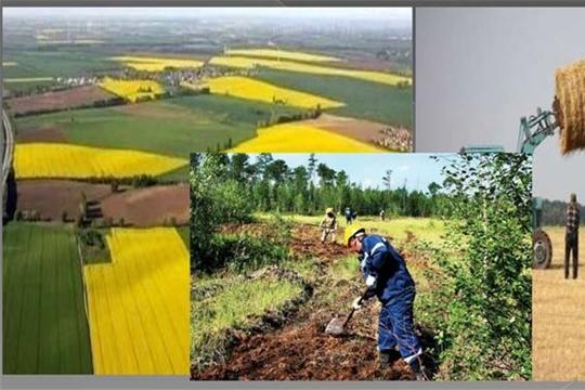 Охрана и рациональное использование земель сельскохозяйственного назначения
