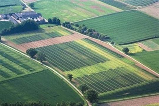 Обследование посадок картофеля в установленных карантинных фитосанитарных зонах и ликвидация очагов золотистой картофельной нематоды в районах Чувашской Республики