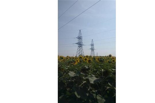 Проведен рейдовый осмотр в Чердаклинском районе Ульяновской области
