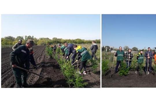 Специалисты Управления Россельхознадзора присоединились к общероссийской акции «Зеленая Россия» в Ульяновске