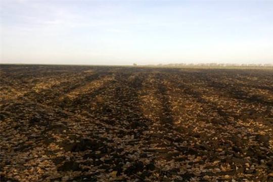 В Старомайнском районе Ульяновской области земля используется по целевому назначению