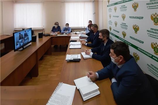 Состоялось заседание Коллегии Россельхознадзора по итогам деятельности за 2019 год