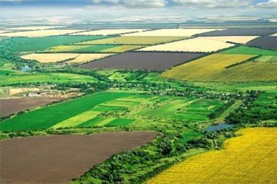 Как продать землю сельхозназначения, находящуюся в собственности