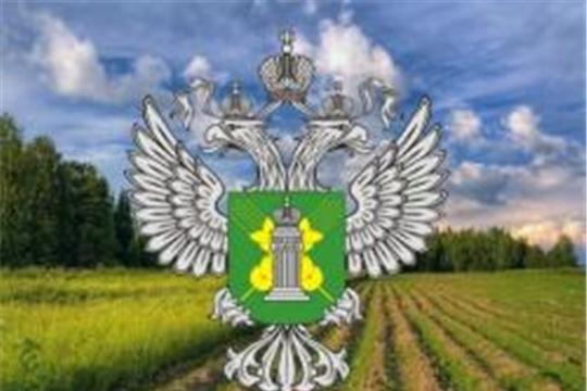 Управление Россельхознадзора по Чувашской Республике и Ульяновской области принимает заявки аграриев на включение в систему «Цербер»